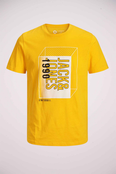 12156806_GOLD FUSION
