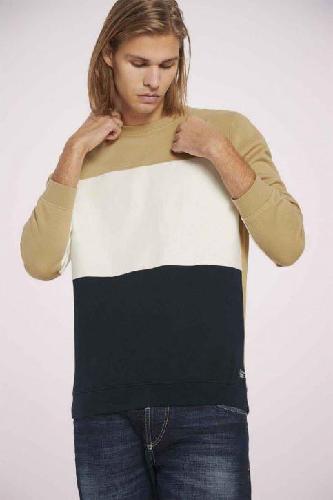 Tom Tailor Sweaters met ronde hals beige 1023842_12435 LARK BEIG img1