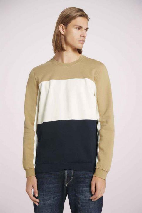 Tom Tailor Sweaters met ronde hals beige 1023842_12435 LARK BEIG img3