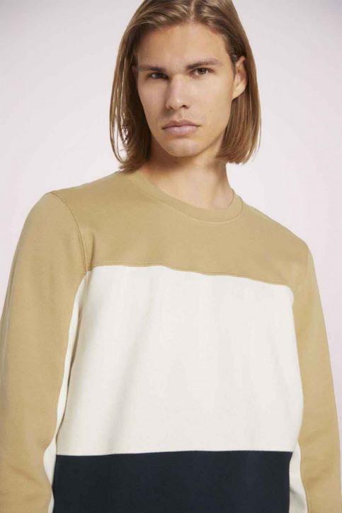 Tom Tailor Sweaters met ronde hals beige 1023842_12435 LARK BEIG img5