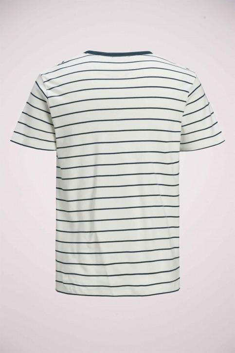 PREMIUM BY JACK & JONES T-shirts (manches courtes) blanc 12169062_BLANC DE BLANC img8