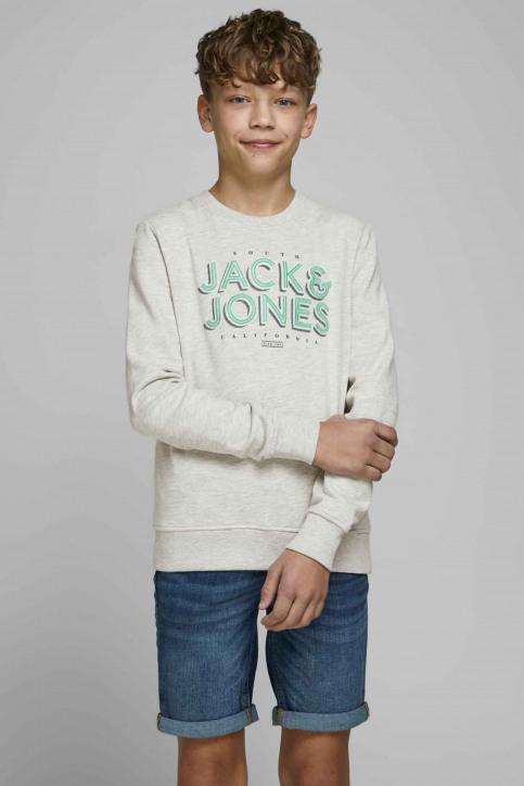 J & J Kids Sweaters met O-hals wit 12171736_WHITE MELANGE img1