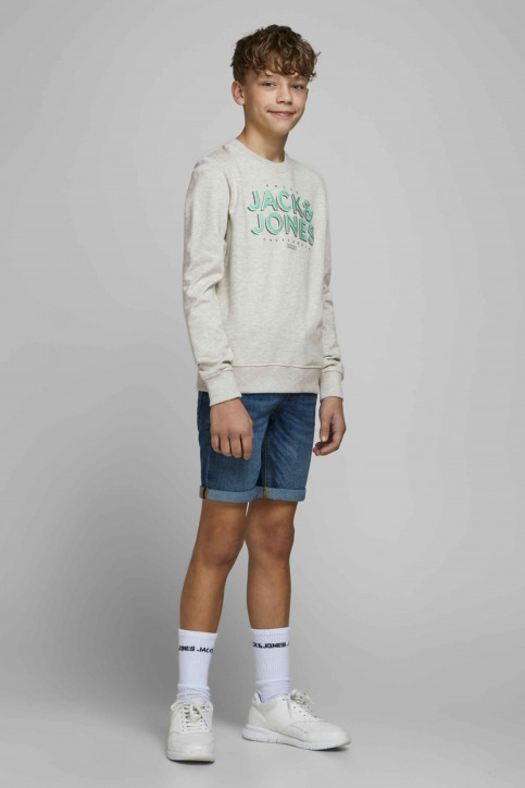 J & J Kids Sweaters met O-hals wit 12171736_WHITE MELANGE img5