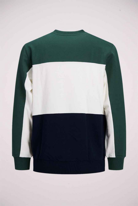 ORIGINALS BY JACK & JONES Sweaters met ronde hals groen 12176810_TREKKING GREEN img8