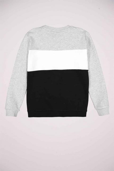 FILA Sweaters met O-hals grijs 688093_A220 LIGHT GREY img2