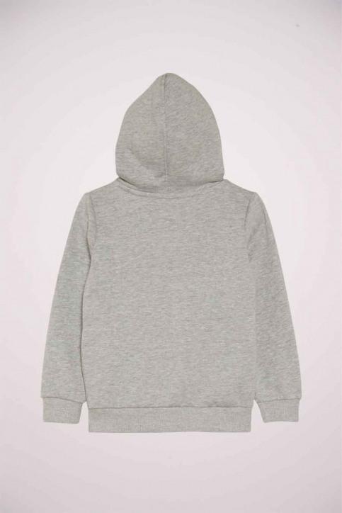 Levi's® Sweaters met kap grijs 9E8778_078 GREY HEATHE img2