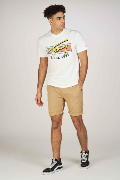 Tommy Jeans Shorts beige DM0DM05444246_246 TIGERS EYE img2