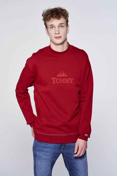 Tommy Hilfiger Sweaters met ronde hals bordeaux DM0DM08722XLK_XLK WINE RED img2