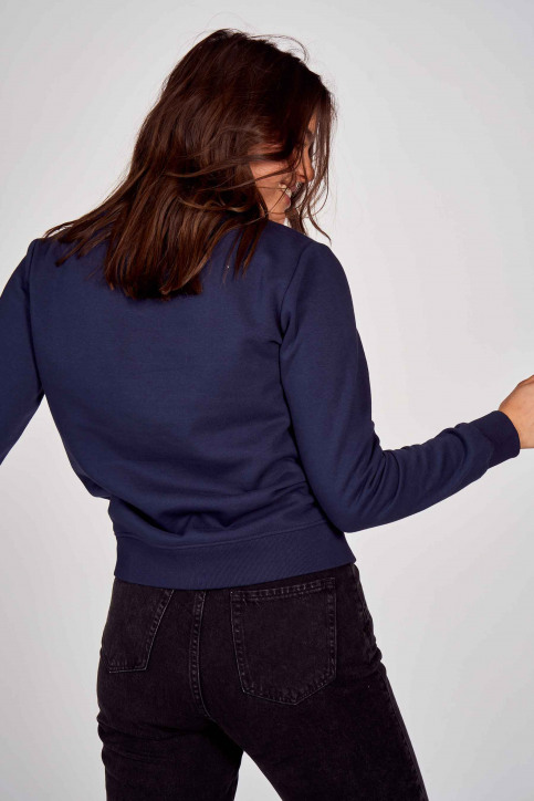 Sweaters met ronde hals blauw DW0DW08973C87_C87 TWILIGHT NA img3