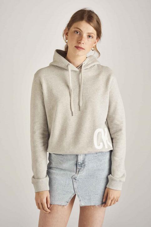 Calvin Klein Sweaters met kap grijs J20J211480_038 LIGHT GREY img1