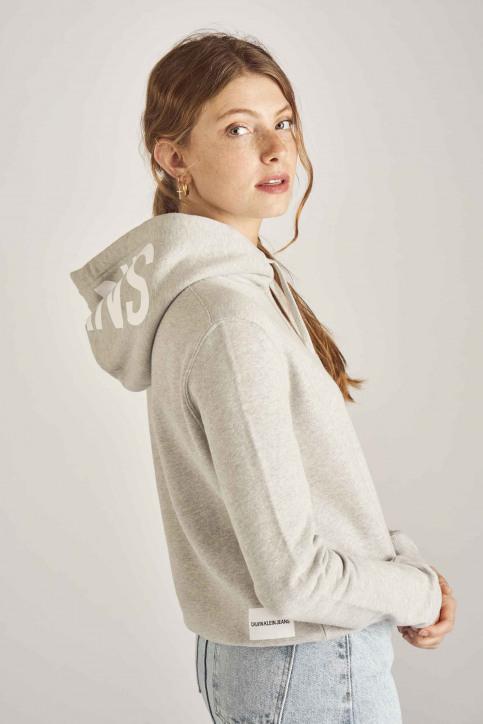 Calvin Klein Sweaters met kap grijs J20J211480_038 LIGHT GREY img4