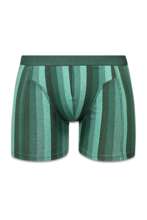 ACCESSORIES BY JACK & JONES Boxers vert JJSTRIPE TRUNKS 1215_SYCAMORE img1