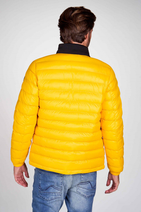 Petrol Industries® Vestes courtes jaune M3000JAC101_1034 AMBER img3