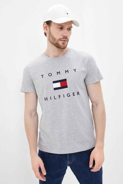 Tommy Jeans T-shirts (manches courtes) gris MW0MW14313_PG5 MEDGREYHEAT img1