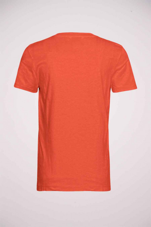 Tommy Jeans T-shirts (manches courtes) orange WW0WW28681SNF_SNF OXIDI ORANG img2