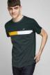 CORE BY JACK & JONES T-shirts (korte mouwen) groen 12175283_DARKEST SPRUCE img6