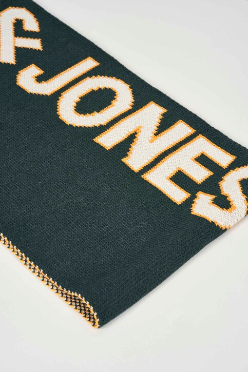 ACCESSORIES BY JACK & JONES Echarpes vert 12158268_SEA MOSS img2