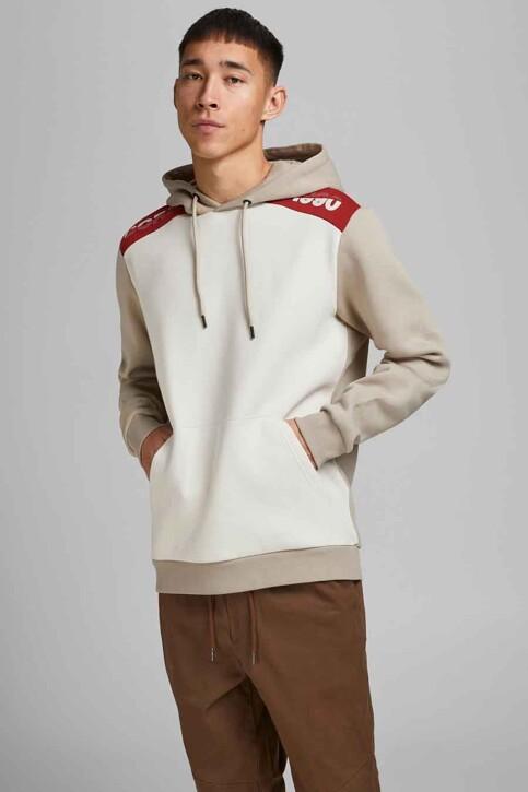 CORE BY JACK & JONES Sweaters met kap grijs 12185092_SILVER BIRCH img1