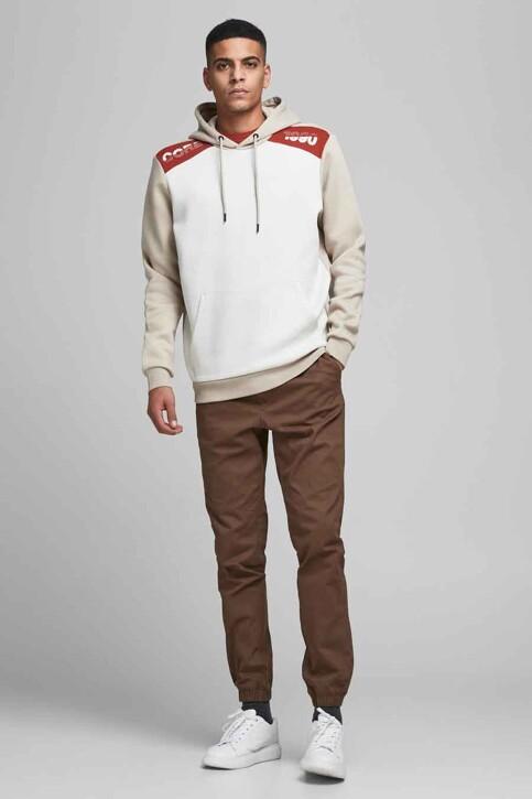 CORE BY JACK & JONES Sweaters met kap grijs 12185092_SILVER BIRCH img2