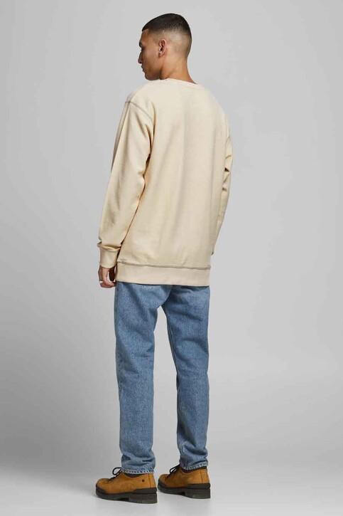 ORIGINALS BY JACK & JONES Sweaters met ronde hals grijs 12186381_SEEDPEARL AMERI img2