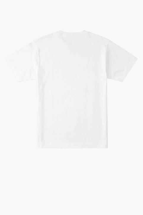 DC SHOES T-shirts (korte mouwen) wit ADYZT04885WBB0_WBB0 WHITE img2