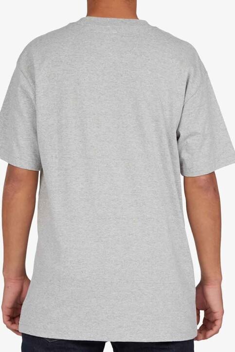 DC SHOES T-shirts (korte mouwen) grijs ADYZT04890KNFH_KNFH HEATHER GR img2