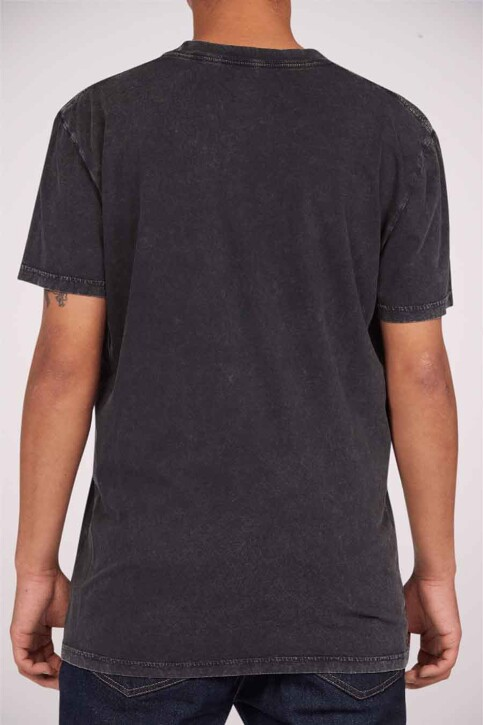 DC SHOES T-shirts (korte mouwen) grijs ADYZT04919KVDW_KVDW BLACK ACID img2