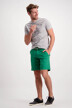 Bruce & Butler Shorts groen BB DALLAS_GREEN img2