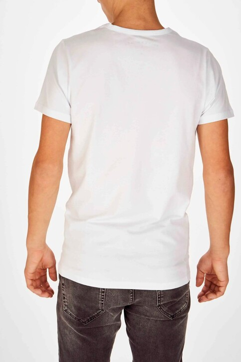 Bruce & Butler T-shirts (korte mouwen) wit BB LENNART SS O 1P_WHITE img3