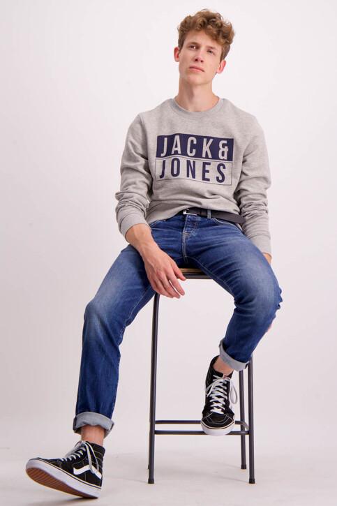 Pepe Jeans Jeans slim denim CANE SLIM_Z23STREAKY STR img2