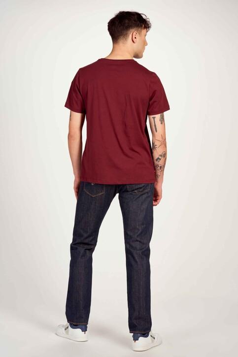 Cyclo Club Marcel T-shirts (korte mouwen) bordeaux CCM211MT 016_ZINFANDEL img3