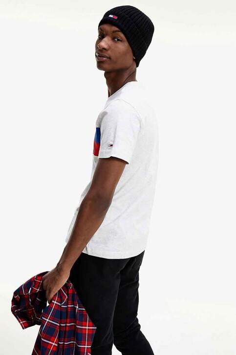 TOMMY JEANS T-shirts (korte mouwen) wit DM0DM09483PJ4_PJ4 SILVER GREY img2