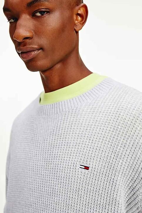 Tommy Hilfiger Sweaters met ronde hals wit DM0DM10183PJ4_PJ4 SILVER GREY img2