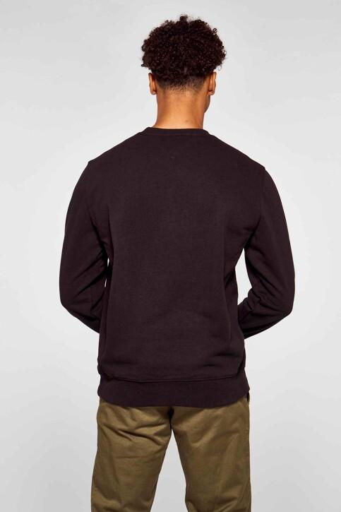 Tommy Hilfiger Sweaters met ronde hals zwart DM0DM10207BDS_BDS BLACK img3