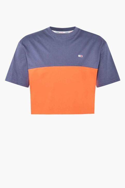 Tommy Hilfiger T-shirts (korte mouwen) blauw DM0DM10885XM2_XM2 HORIZON MUL img4
