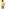 GARCIA Korte jassen geel GJ000901_3309 MARIGOLD