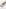 GARCIA Riemen beige I12541_802 NOMADE