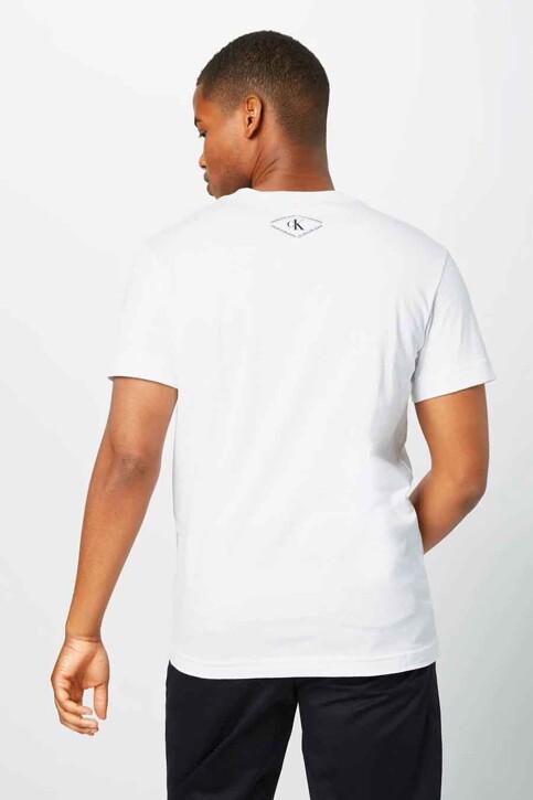 Calvin Klein T-shirts (korte mouwen) wit J30J317497YAF_YAF BRIGHT WHIT img2