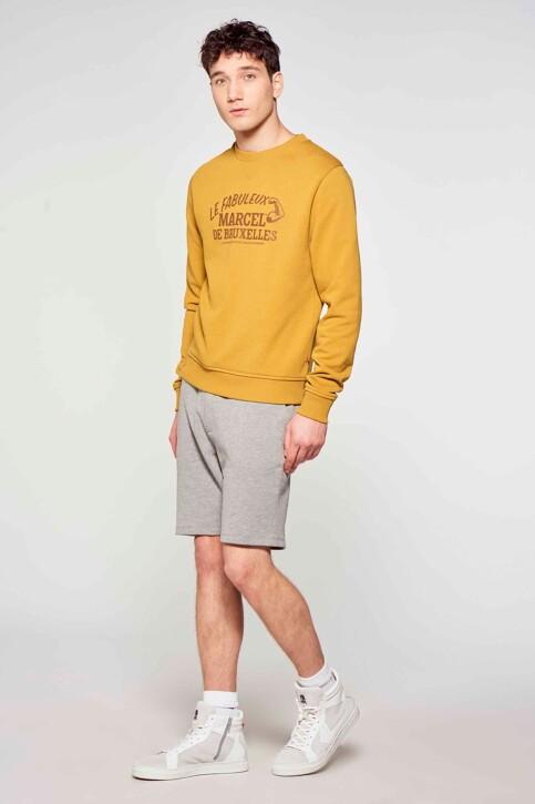 Le Fabuleux Marcel de Bruxelles Sweaters met ronde hals bruin MDB211MT 008_DRIED TOBACCO img1