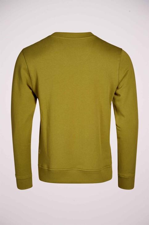 R.EV 1703 by Remco Evenepoel Sweaters met ronde hals groen REV211MT 005_GREEN MOSS img6